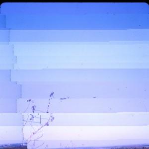 Untitled (#11), 2013